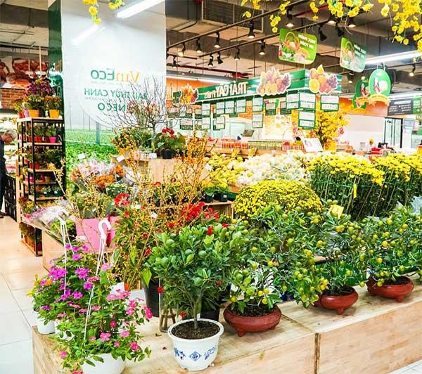 Kệ trưng bày hoa bằng kệ siêu thị